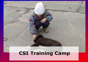 CSI Training Camp